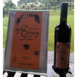 Teziomy organic red wine