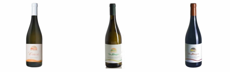 Sparkling wines - Katuma